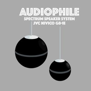 Nivico JVC Speakers
