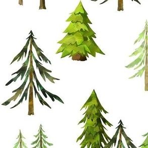 Pine Tree Forest - Woodland Trees LARGE SCALE A