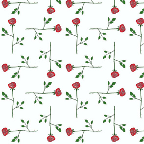 scattered_longstem_roses