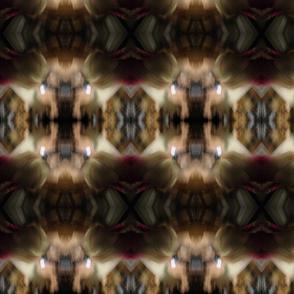 IMG_1509 Life's a Blur