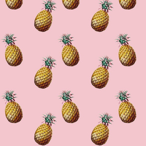 Welcoming Pineapple  on Millenial Pink