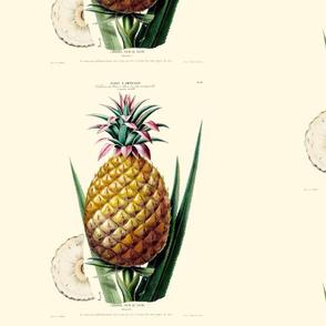 Welcoming Pineapple Stripe on Cosmic Latte