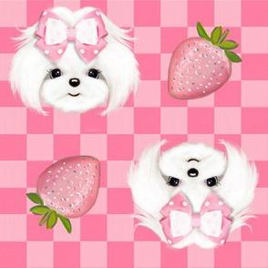 Maltese Pink Strawberry M