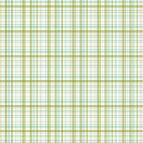 Ride a bike coordinating check in mint and olive (smaller plaid)