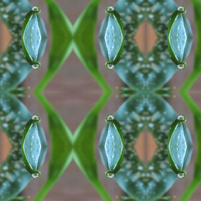 IMG_7723  Calla Leaf Dew Drop