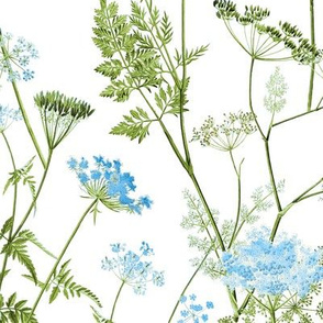 Queen Anne's Lace - Blue