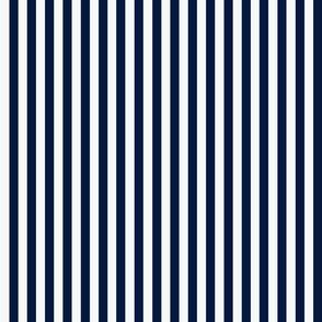 CG Midnight Stripe