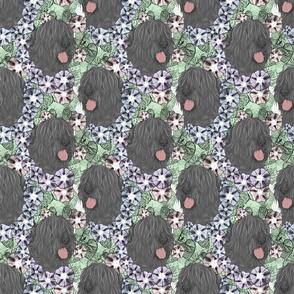 Floral Black Russian Terrier portraits