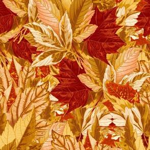 Maple Leaves  ~ Autumn Sunrise