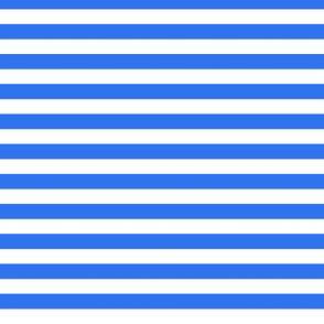 Polar Stripes