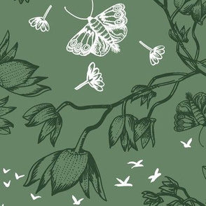 ORCHID OWL TWO-TONE - SAGE GREEN