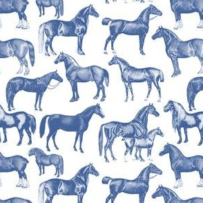 Blue Horse Pattern