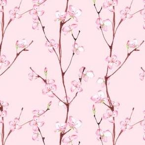PInk spring pattern