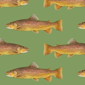 brown trout on vintage green