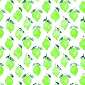 Green lemons, watercolor