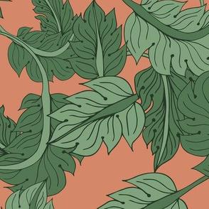 oldrose foliage