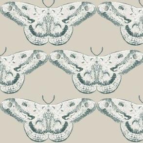 Pale Greige & White Mystic Moth