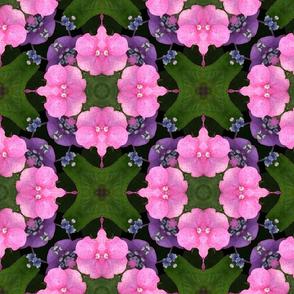 Pink Hydrangea  tiling square