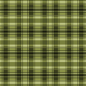 C3 plaid square - olive