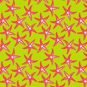 Star Fish on Green