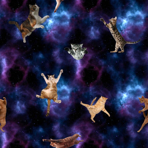 7036029-catsinspace-by-thriftstorejunkie2