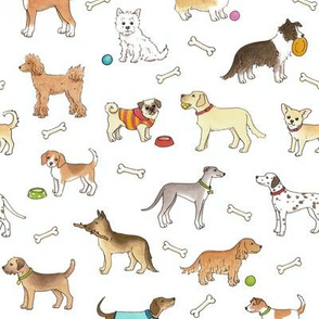Dogs - medium scale