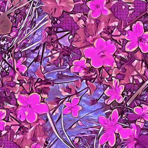 Purple  Butterfly phlox