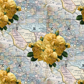 Redoute Yellow Rose of Texas ~ Texiana