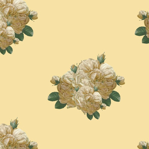 Redoute Yellow Rose of Texas ~ Dusty Trails   on Country House