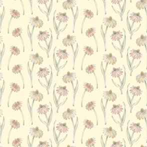 Coneflower Pattern