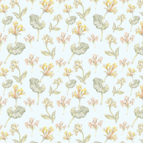 honeysuckle pattern