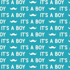 It's a Boy // Gender Reveal Little Man