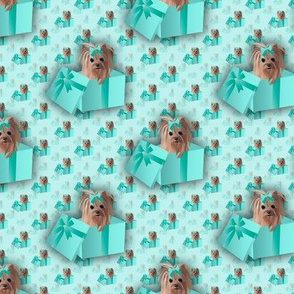 Yorkie - Tiffany Matching fabric abt 2""