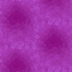 Spiral Fuchsia