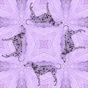 Dogs in The Garden - Dashing Dalmatians