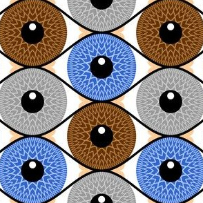 07059883 : eye 3 : optician