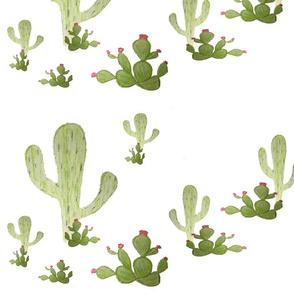cactus hand drawn