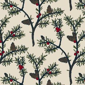Evergreen Pinecones and Berries