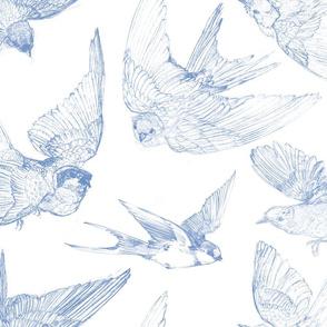 Flight blueberry
