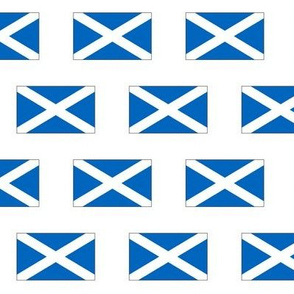 Flag of Scotland // Small