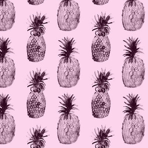 Pink toned pineapples