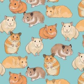 Hamsters on Light Blue