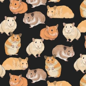 Hamsters in Color on Slate