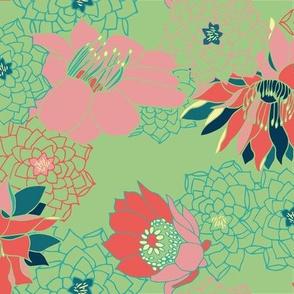 Succulent Blooms