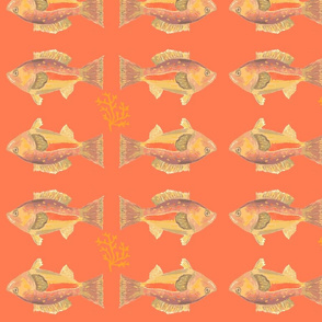 Heathers Orange Fish-ch-ed