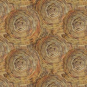 Tree Rings IV