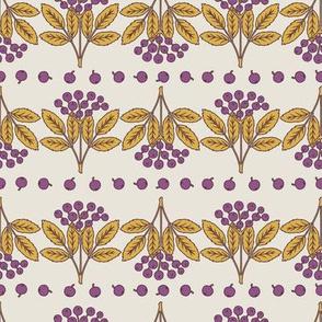 Elderberry - Purple
