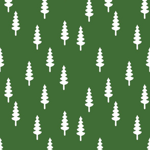 forest on pine