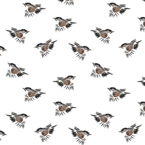 Little Sparrow