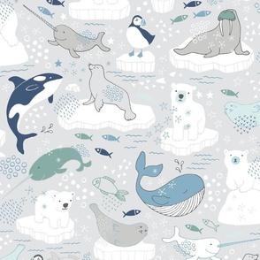 Arctic Animal Icebergs - polar bear white